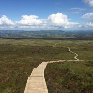 Komfortiškas ir visiems tinkantis žygis Airijoje: kvapą gniaužiantys vaizdai